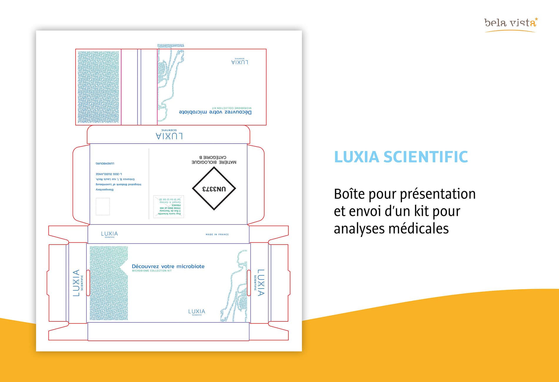 luxia1